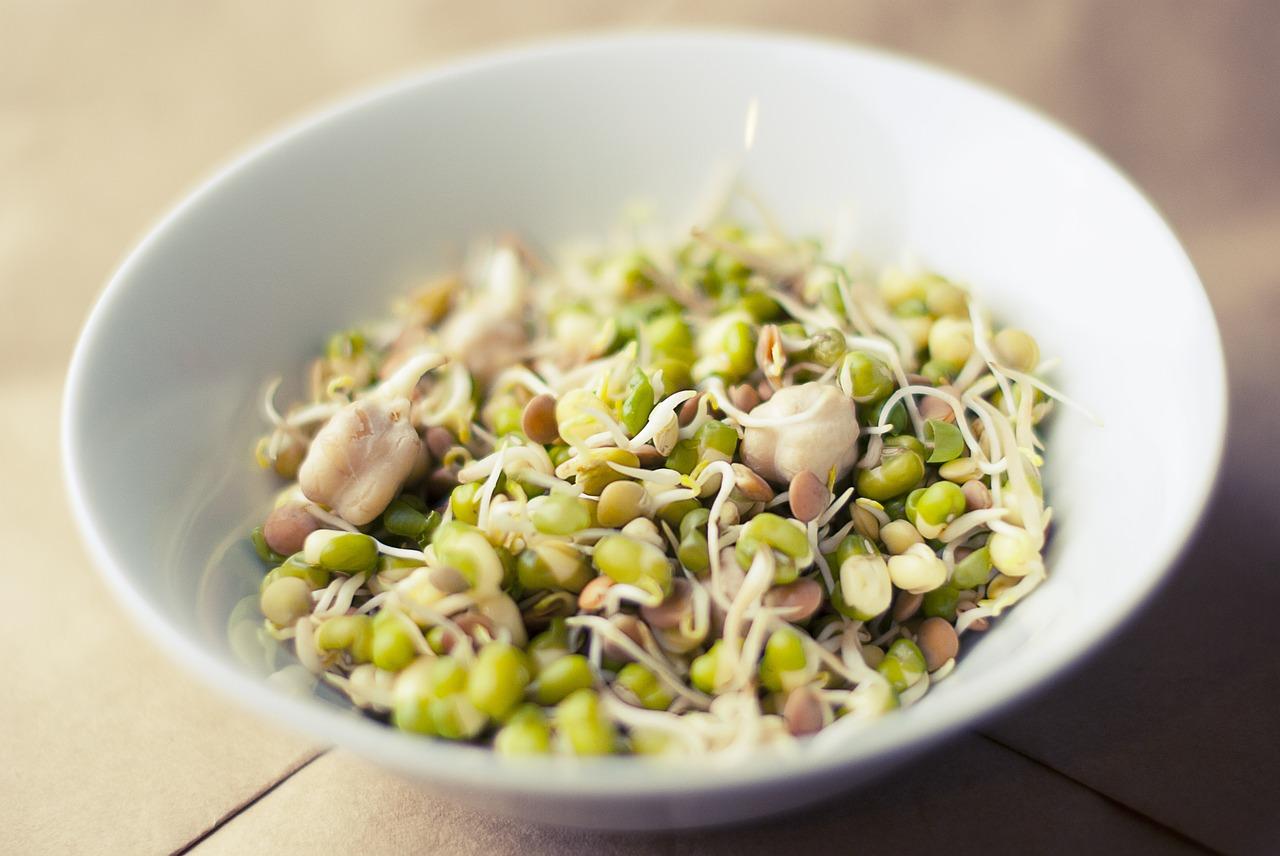Côté santé : découvrez 7 aliments à intégrer dans votre routine alimentaire